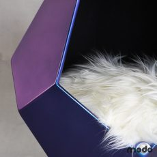 Mora-Azul Camaleón